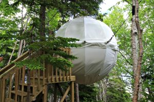 tree house homes for sale, treehouse, cocoon house,