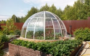 domed greenhouse, dome greenhouse